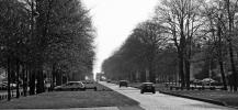 63.8-photo-allée-de-tilleuls_fmt